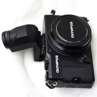 P2241508.jpg : OLYMPUS E-M5, M.ZUIKO DIGITAL 45mm F1.8, 1/160sec F5.6 ISO-200, 露出補正:0EV