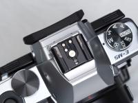 hotshu.jpg : OLYMPUS E-P5, M.ZUIKO DIGITAL 45mm F1.8, 1/250sec F6.3 ISO-800, 露出補正:0EV