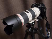 PC064780.jpg : OLYMPUS E-P5, OLYMPUS M.12-40mm F2.8, 1/20sec F5.6 ISO-3200, 露出補正:0EV