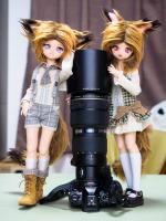 PB302751.jpg : OLYMPUS E-M5MarkII, OLYMPUS M.12-40mm F2.8, 1/60sec F2.8 ISO-800, 露出補正:0EV