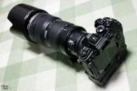 1V6A5938.jpg : Canon EOS R5, Canon RF50mm F1.8 STM, 1/50sec F8.0 ISO-2000, 露出補正:0EV