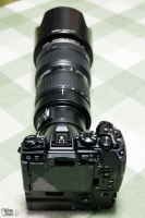 1V6A5939.jpg : Canon EOS R5, Canon RF50mm F1.8 STM, 1/50sec F8.0 ISO-2000, 露出補正:0EV